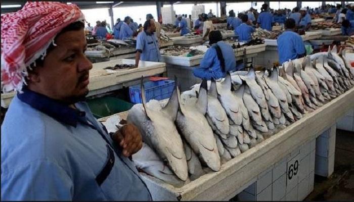 Mua sắm tại chợ Deira Dubai với những hải sản khổng lồ