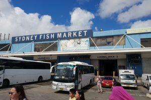 Những món hải sản ngon đến nức lòng tại chợ cá Sydney