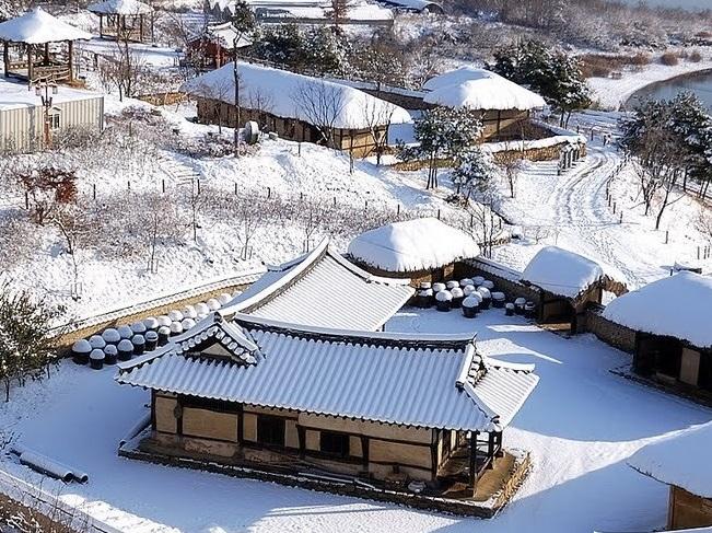 Mùa đông ở Busan Hàn Quốc