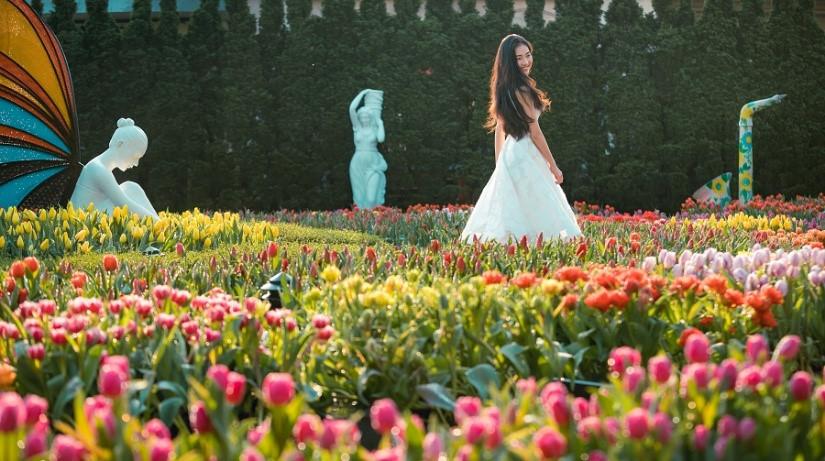 """Khu vực vườn hoa Le Jardin d'Amour lâu nay được xem là """"vườn thơ"""" của du khách."""