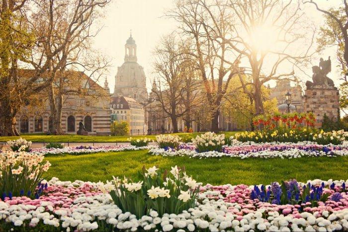 Nhà thờ Đức Bà Dresden đầy sinh động những ngày mùa xuân