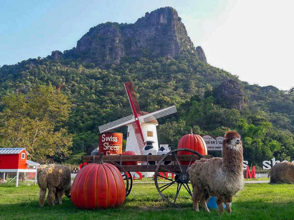 Swiss Sheep Farm Thái Lan