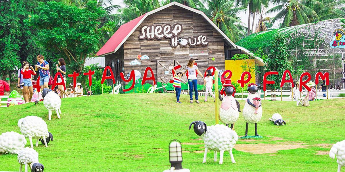 Nông trại cừu Swiss Sheep Farm Thái Lan