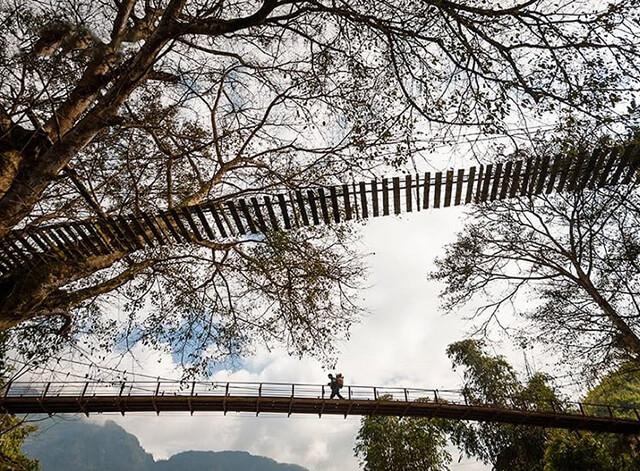 Đến với cầu Mây bạn sẽ được đắm chìm trong không gian thơ mộng với rửng cây xanh mát, suối chảy róc rách
