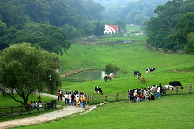Hồ Green Grass Hsinchu