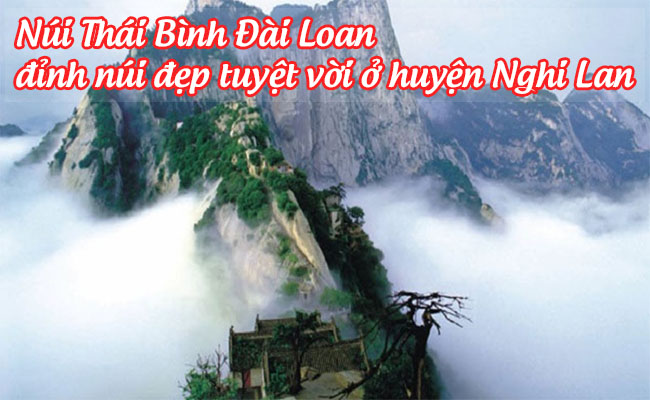 Hồ Thúy Phong