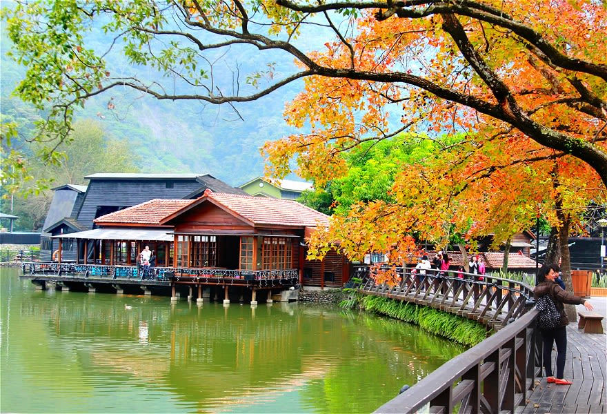 Ngắm lá phong ở Che Cheng