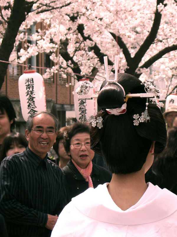Sakura (Hoa Anh Đào) Nhật Bản