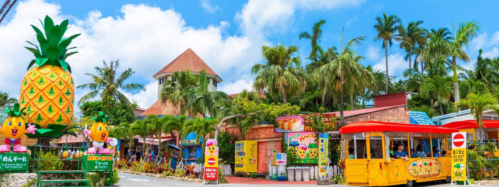 Công Viên Dứa Nago nằm trên đảo nổi Okinawa, Nhật Bản
