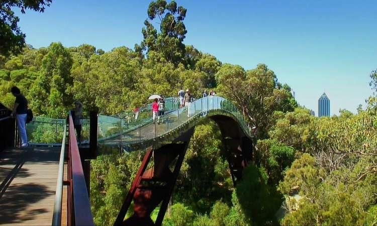 Kings Park - Công viên của các vị vua ở Úc
