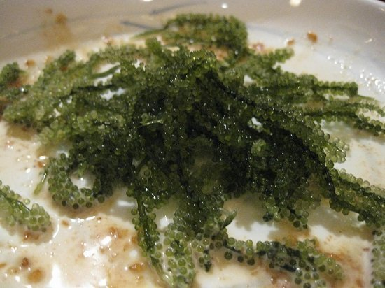 Rong biển Mozuku