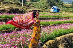 Những thiên đường hoa rực rỡ chỉ có ở thành phố Sapa