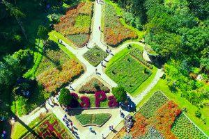 Núi Hàm Rồng trong tour du lịch Sapa có gì hấp dẫn?