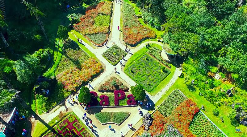 Vườn hoa Hàm Rồng Sapa