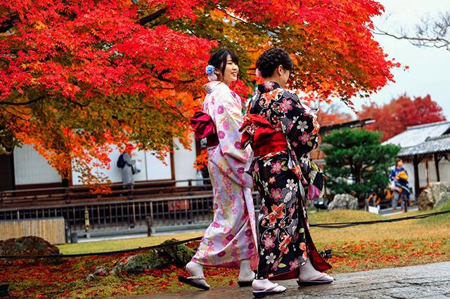 Du khách đừng bỏ lỡ cơ hội ướm thử các bộ Kimono hoặc Yakata trong chuyến tham quan đất nước mặt trời mọcDu khách đừng bỏ lỡ cơ hội ướm thử các bộ Kimono hoặc Yakata trong chuyến tham quan đất nước mặt trời mọc