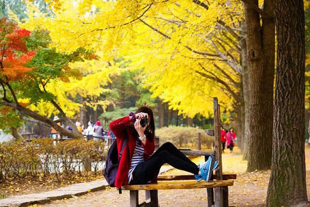 Đừng quên mang theo áo khoác khi xê dịch đến xứ sở Phù Tang vào mùa thu