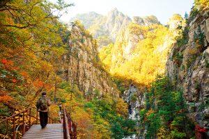 Du lịch Hàn Quốc mùa thu nên đi đâu?