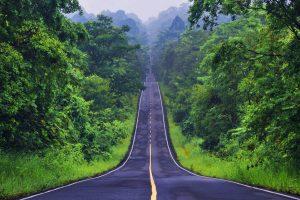 Vườn quốc gia Khao Yai – Điểm đến lý tưởng cho tour du lịch Thái Lan