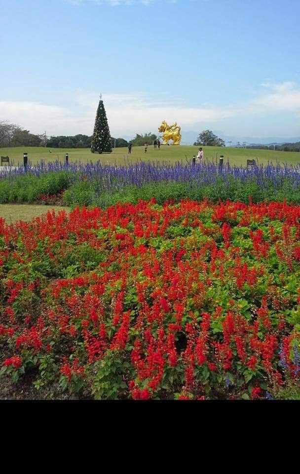 Công viên Singha, Chiang Rai