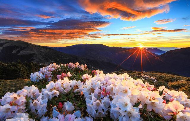 Khung cảnh hoàn hôn đẹp như tranh vẽ tại núi Hehuan, Đài Loan