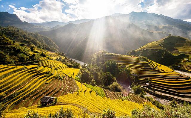 Du lịch Sapa tháng 9 để ngắm nhìn những thuở ruộng bậc thang đương độ chín vàng óng ánh