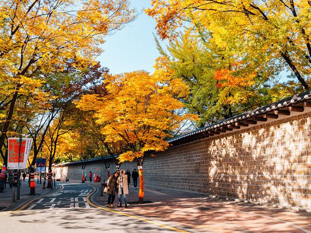 Tản bộ trên đường Garosu-gil là một trong những hoạt động không thể bỏ lỡ trong tour du lịch Hàn Quốc giá rẻ