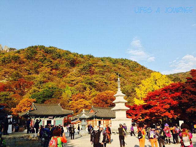 Tìm hiểu thời tiết tại vùng đất sắp đến trong chuyến du lịch Nhật Bản để có sự chuẩn bị trang phục cho phù hợp và gọn nhẹ