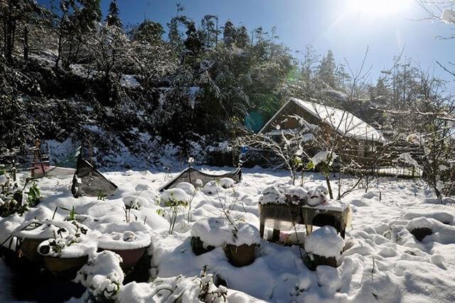 Từ tháng 12 đến tháng 2 thời tiết Sapa lạnh đến thấu xương, đôi khi còn có tuyết