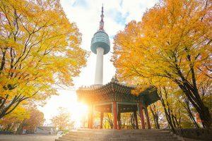 5 điều phải làm khi du lịch Hàn Quốc mùa thu