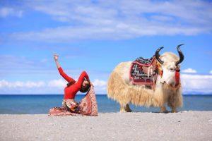 Đi du lịch Lệ Giang – Shangrila tự túc nên chuẩn bị những gì?