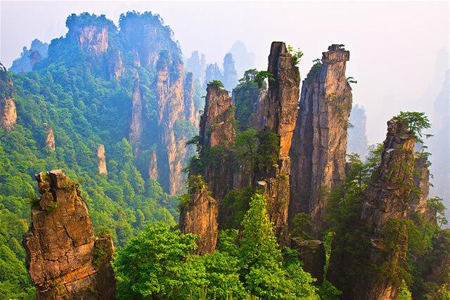 Vườn Quốc Gia Trương Gia Giới nổi tiếng với phong cảnh thiên nhiên mỹ lệ cùng hệ động thực vật phong phú