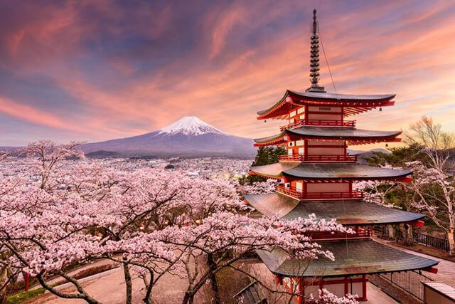 Thời gian lí tưởng nhất để du lịch Nhật Bản mùa hoa đào là cuối tháng 3- đầu tháng 4