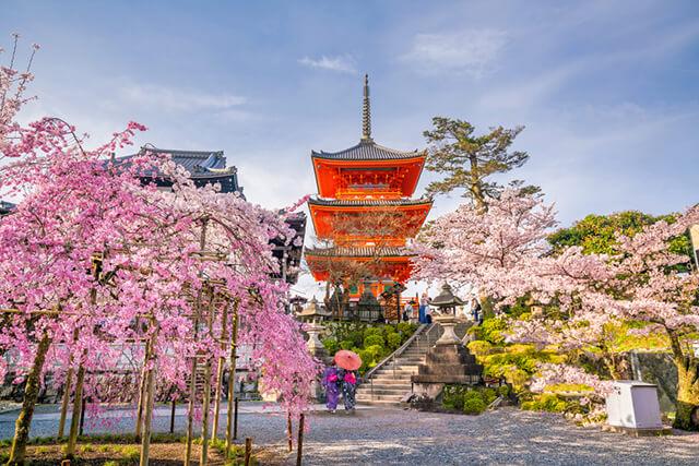Chọn thời điểm đi du lịch Nhật Bản