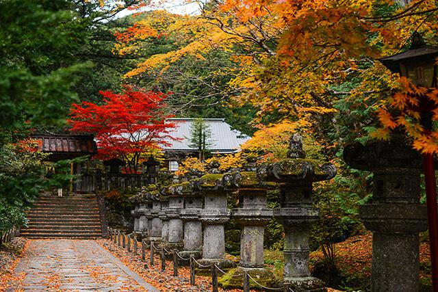 Thị trấn Nikko mùa lá đỏ ẩn chứa nhiều địa điểm tham quan hấp dẫn chờ đón du khách trong tour Nhật Bản