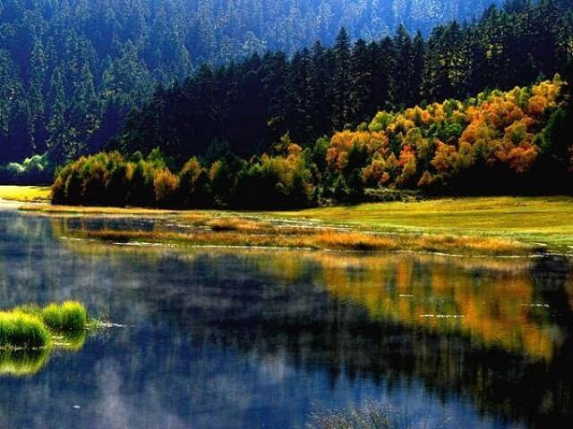 Khung cảnh rừng cây thay lá vào mùa thu tạo nên một bức tranh thiên nhiên rực rỡ sắc màu.