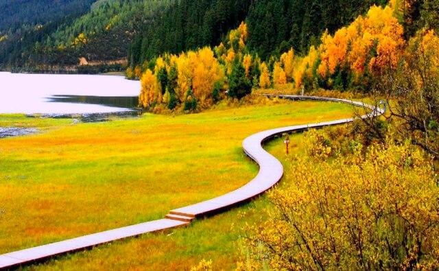 Con đường gỗ nhỏ uốn lượn quanh hồ Bita.