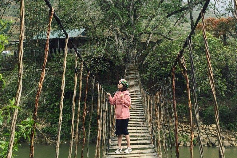 Cây cầu mây nổi tiếng bắc qua suối Mường Hoa