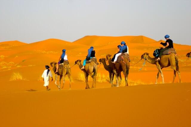 Cưỡi lạc đà thong dong trên sa mạc Safari Dubai.