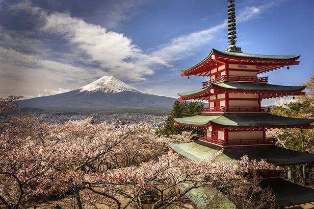 Tour Nhật Bản ngắm hoa anh đào 2020 có rất nhiều địa điểm đặc sắc đang chờ đón du khách