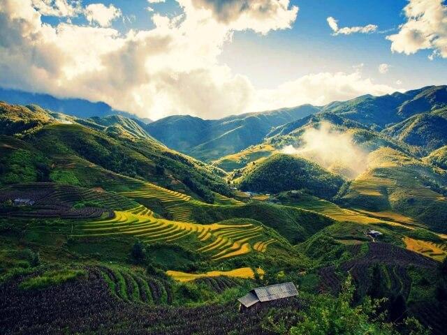 Mùa hè ở Sapa hiện lên với màu sắc xanh mướt dưới ánh nắng vàng của những thửa ruộng bậc thang nối tiếp.