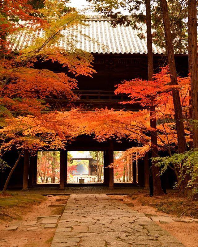 ngôi đền Tenryuji
