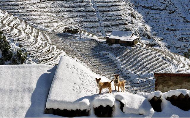 Du lịch Sapa mùa đông có cảm giác như đang xê dịch bên trời Âu