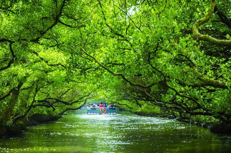 Kênh Sicao Green Đài Nam Đài Loan