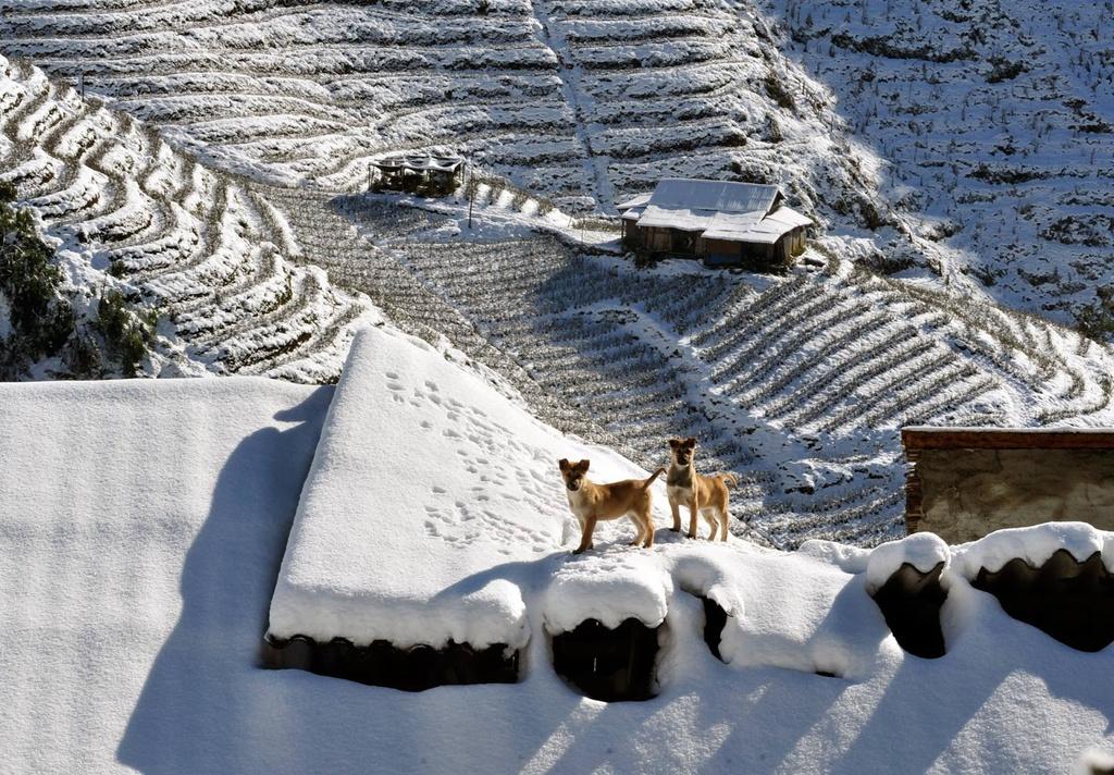 Ruộng Bậc thang vào tháng 12 tuyết rơi