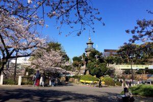 Cẩm nang du lịch Tokyo cho những bạn đi Nhật Bản lần đầu tiên!!!