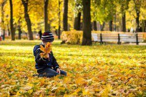 Khám phá vẻ đẹp mùa thu ở nước Nga!