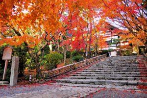 Những điểm du lịch nổi tiếng ở Kyoto, Nhật Bản!
