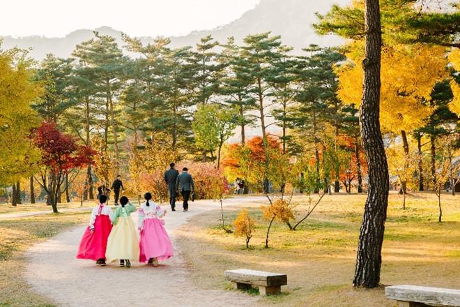 Thời tiết Hàn Quốc vào tháng 10 vô cùng dễ chịu