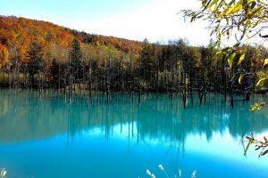 """Những địa điểm du lịch ưa thích ở Hokkaido khiến bạn """"quên lối về"""""""