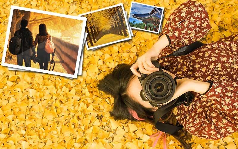 Thẻ nhớ máy ảnh luôn trong tình trạng đầy
